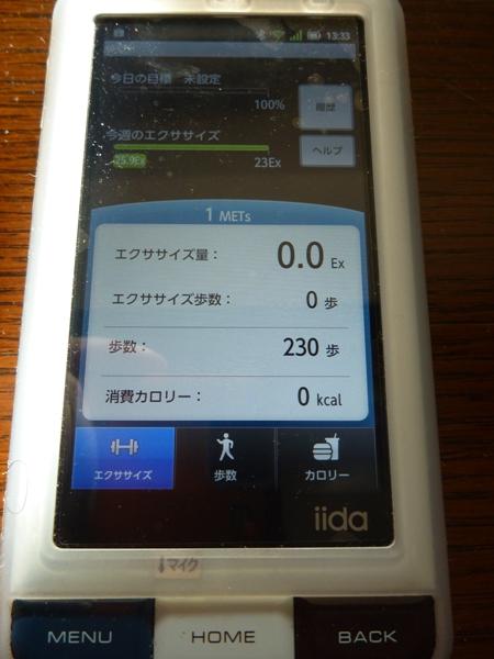 P1000918.jpg